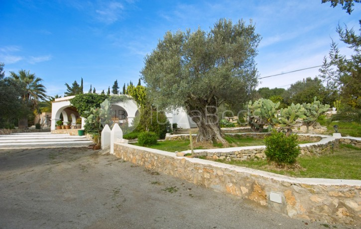 villa-holiday-rental-ibiza-16